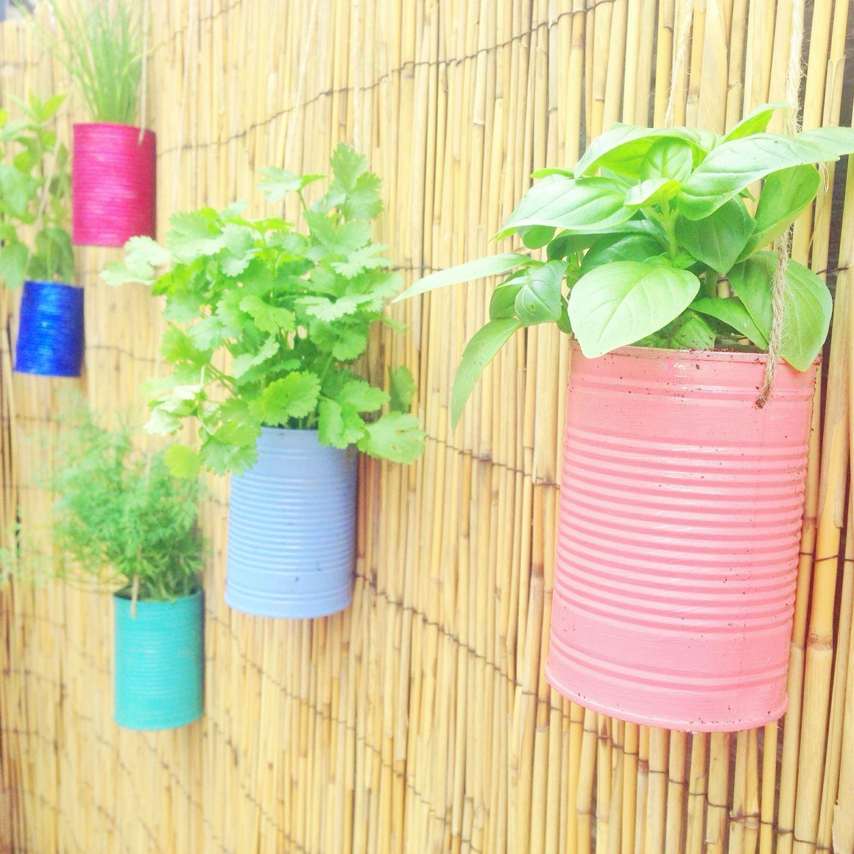 diy pretty pastel herb garden planters kate beavis