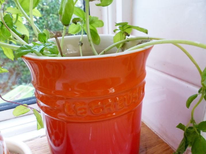 Le Creuset orange ceramic pot as a planter as seen on Kate Beavis Vintage Home blog